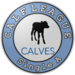Calf league A.png